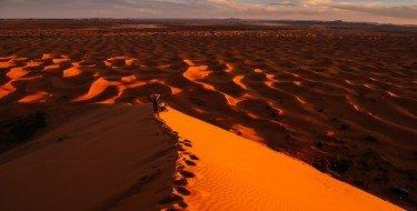 Cycling Morocco 2016